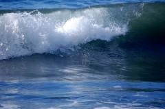 ocean-pacifique.1222064550.jpg