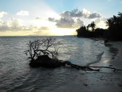Guadeloupe FB.jpg
